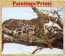 inpagepreview-paintingsprints