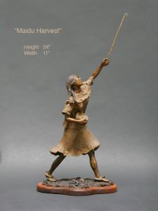 Maidu Harvest