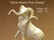 Silver Marco Polo Sheep