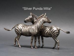 Silver-Zebra-2